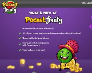 Pocket Fruity New Look