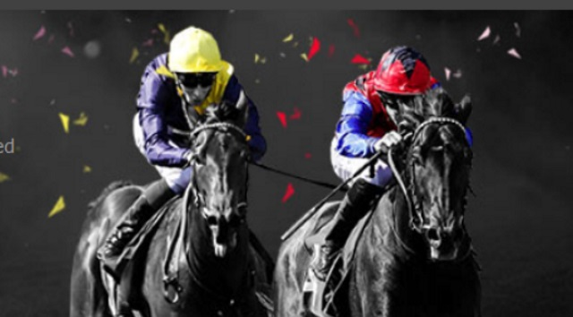 How to Bet on the Cheltenham 2019 at Bet365